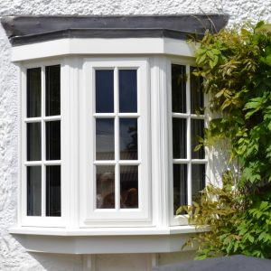 White uPVC bow bay conversion windows with plant on Georgian bars